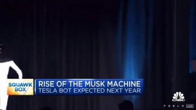 The Tesla Bot
