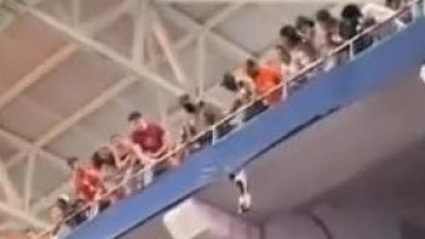 Miami Dolphins Fans Save A Falling Cat At Hard Rock Stadium
